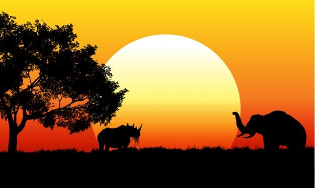 scene-de-safari-africain_1048-118